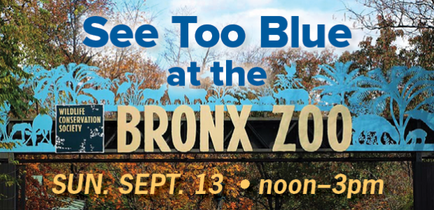 Bronx zoo slider